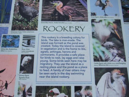 Bird Island Rookery Storyboard 1